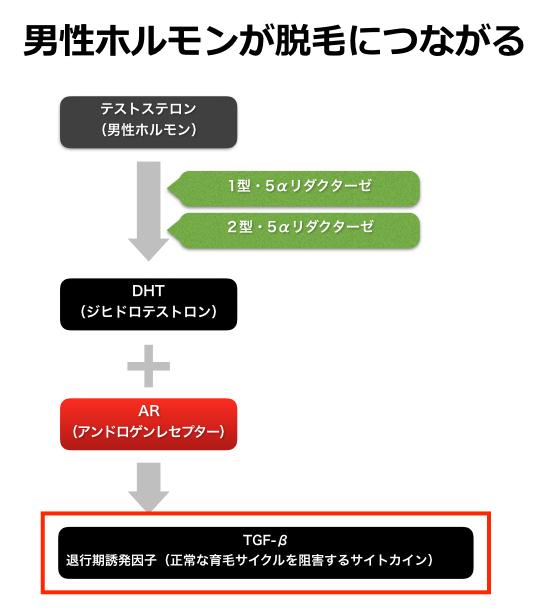 AGAの説明図