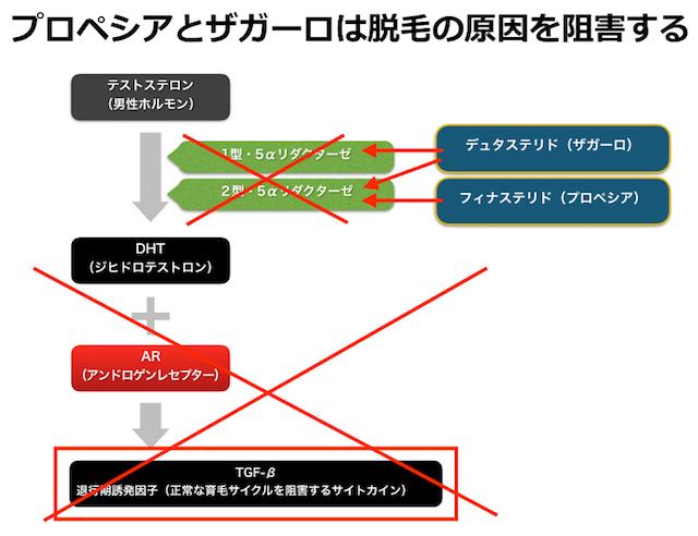 ザガーロ効果の説明図